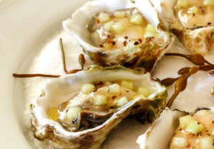 AdLib_Kumamoto_Oysters_photo_by_Meg_Smith.jpg