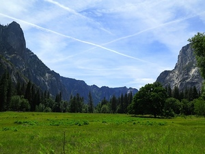yosemite-meadow.jpg