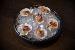 TheVault555_KevinMcCullough-scallop.jpg