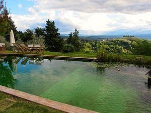 2-paluffo-pool-view.jpg