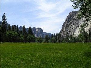 5c-yosemite-meadow.jpg