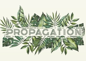 propagation-logo.jpeg
