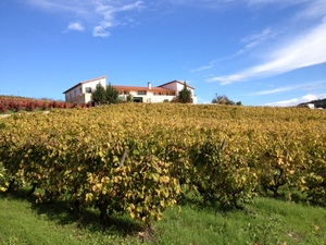 eugenio-houseandvineyards.JPG
